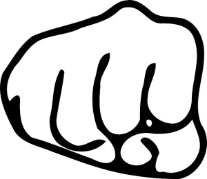 fist-149497_640